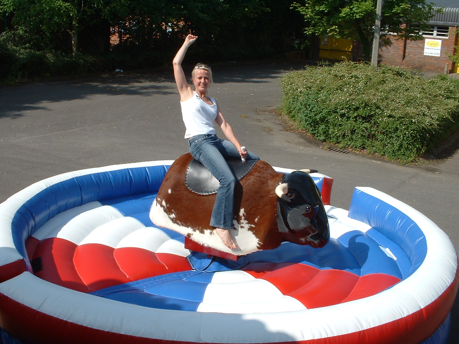 Rodeo Bull Bucking Bronco Multi Ride